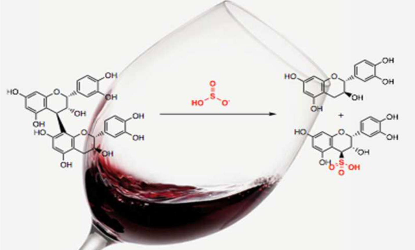 Chemistry Why Aged Red Wines Taste Better American Council On 1929 Ford Model A Wiring Diagram In Research Recently Published The Journal Of Agricultural And Food Team Led By Lingjun Ma Andrew Waterhouse University