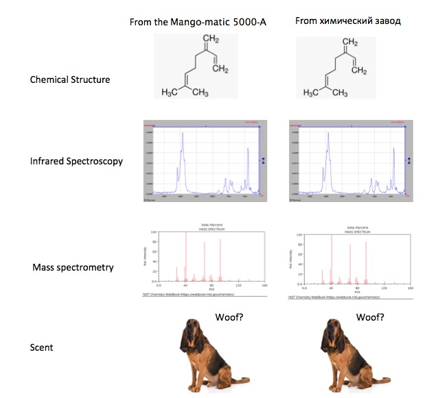 Figure 2. Comparison of batches of myrcene from mangoes and химический завод. Photo: American Kennel Club