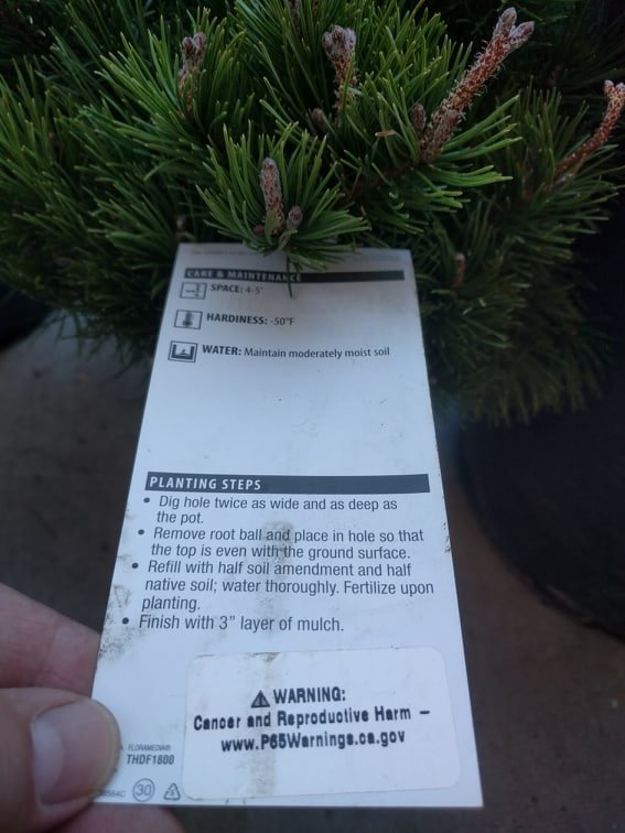 Will Warning Labels Scare Parents Away >> In California Trees Have A Prop 65 Cancer Warning American
