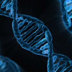 An Unexpected Gene Important in Brain Infection | American Council
