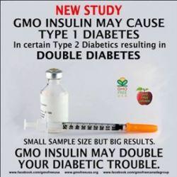 40 Years Ago, GMO Insulin Was Controversial Also | American