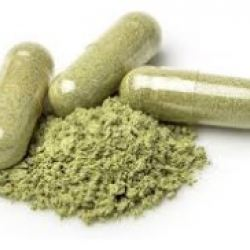 I Was 'Wrong' About Kratom and Here's Why | American Council