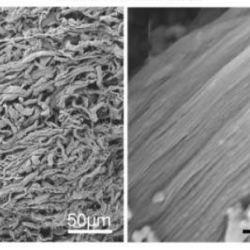 Nanofibers Dramatically Improve Wound Healing and Tissue